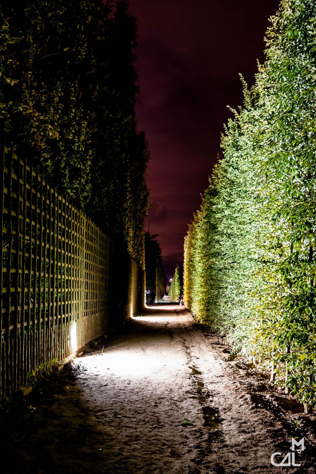 Grandes eaux nocturnes jardin de versailles all e for Jardin nocturne