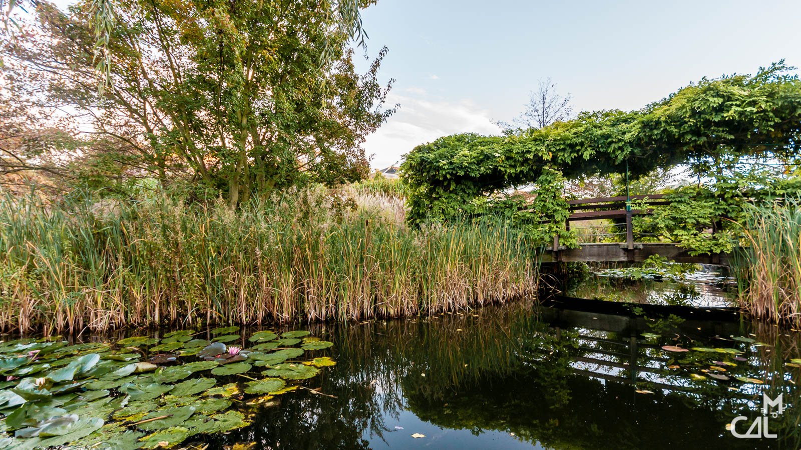 parc des impressionnistes petit pont de bois sur le jardin d eau mon chat aime la photo. Black Bedroom Furniture Sets. Home Design Ideas