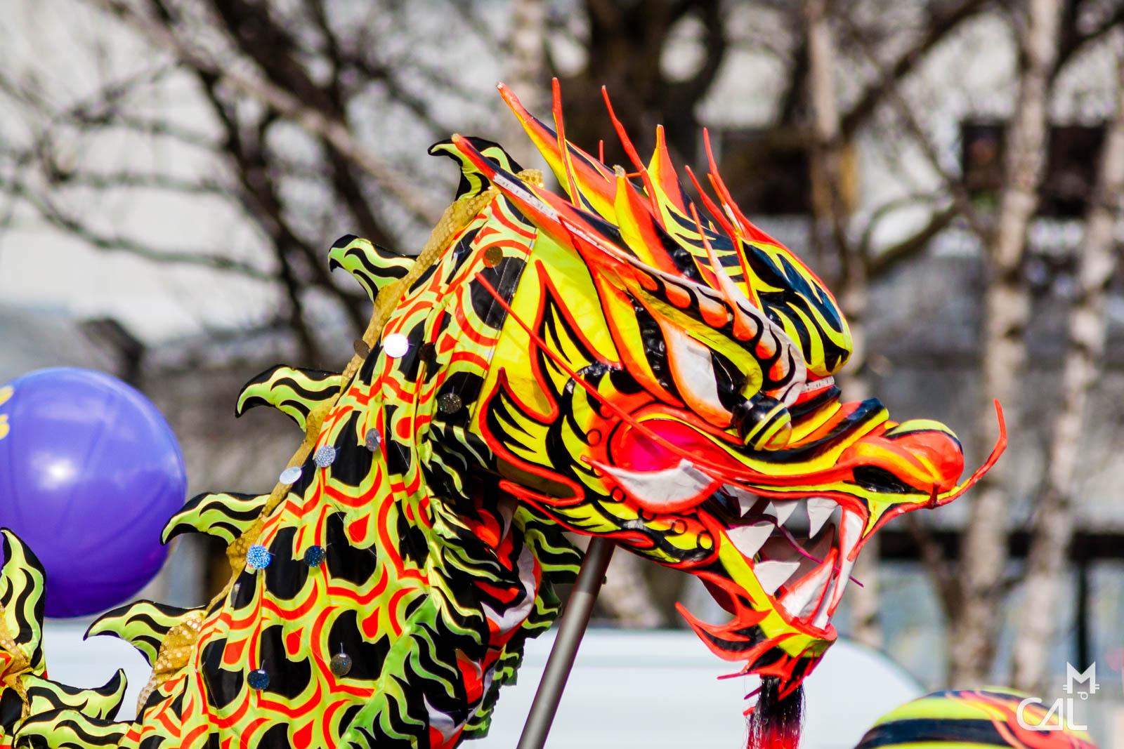 D fil nouvel an chinois t te de dragon mon chat aime - Photo de dragon chinois ...