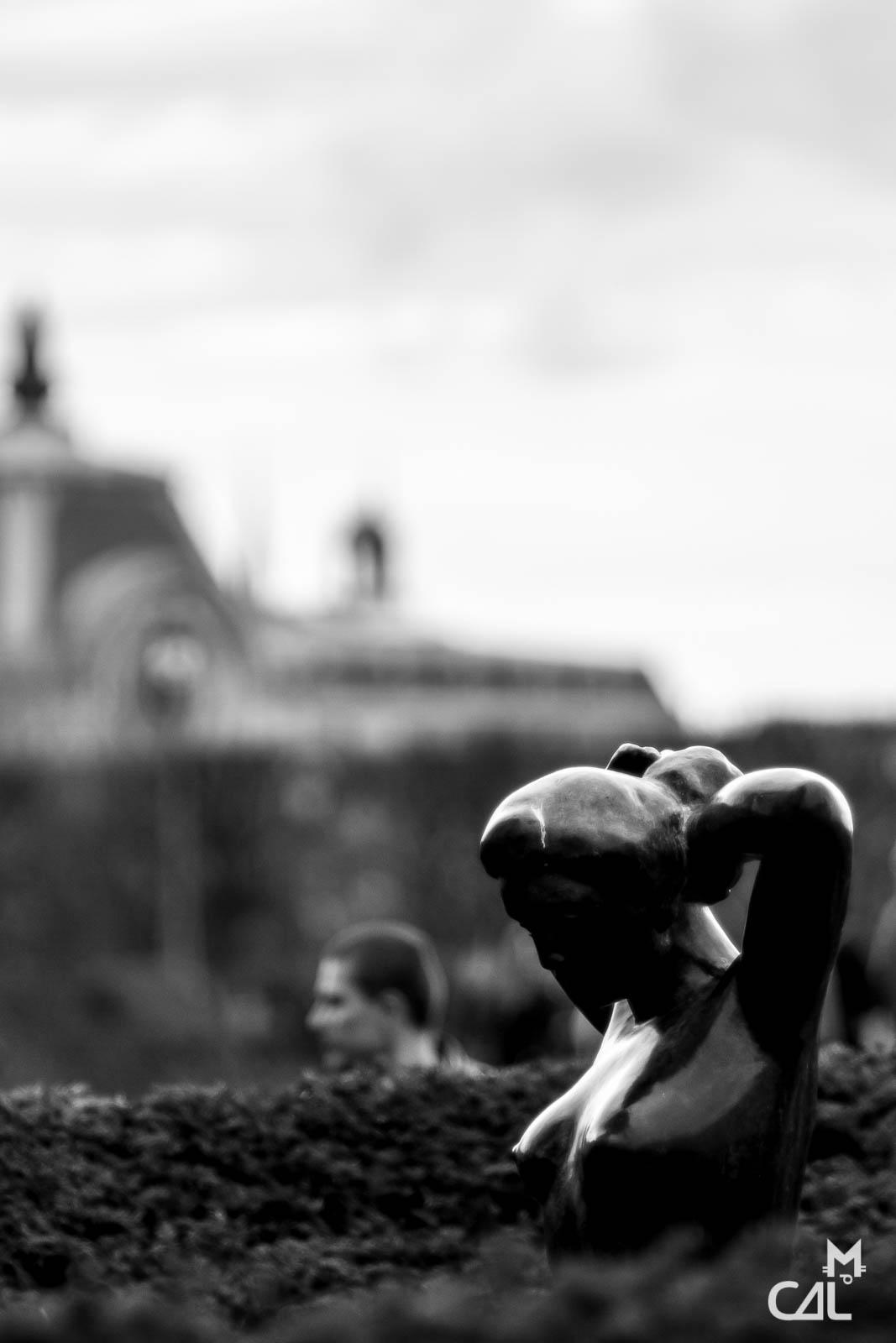 Jardin des tuileries couple contre nature mon chat for Au jardin des tuileries