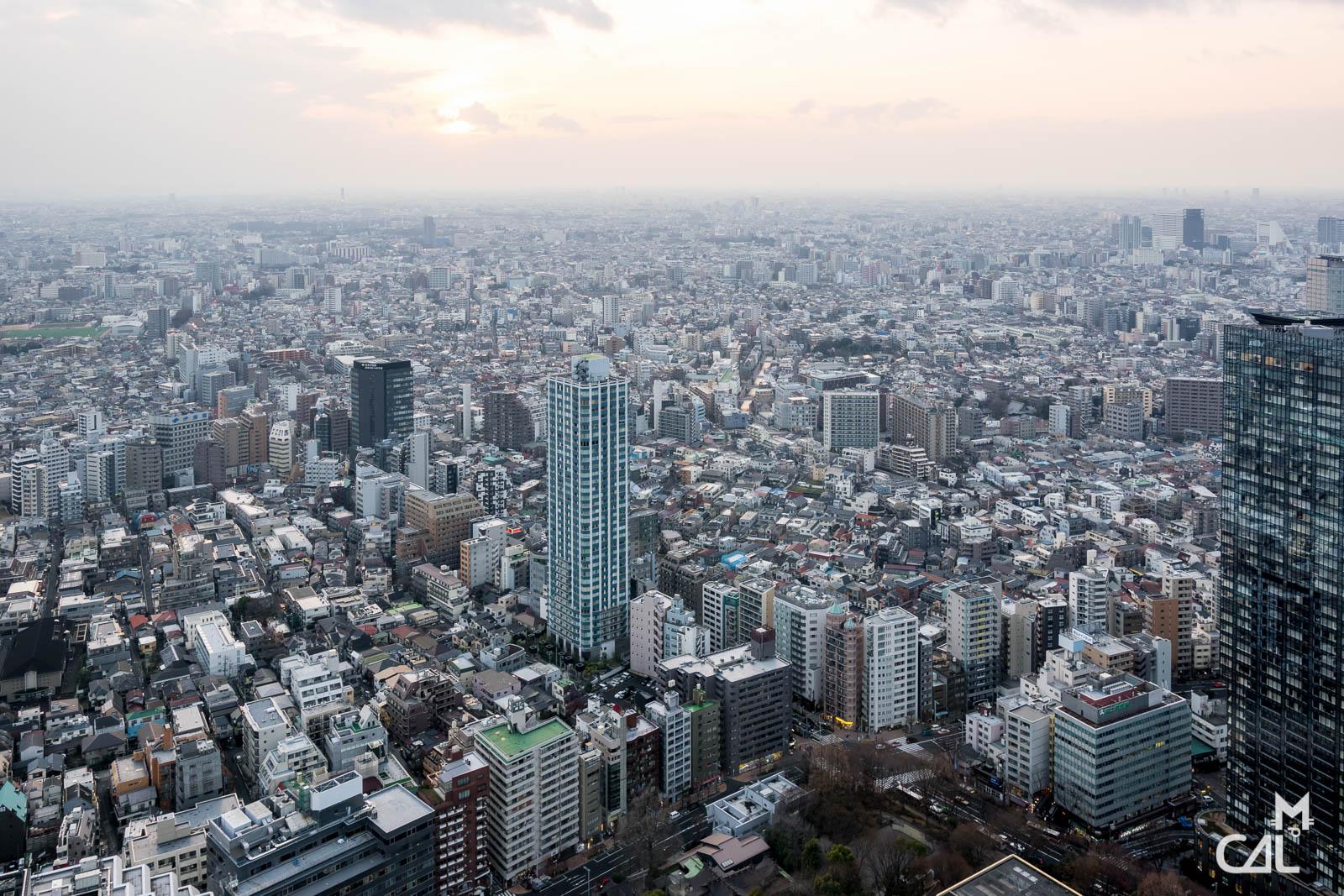 Tokyo Metropolitan Government Building et Shinjuku : vue vers l'ouest  Mon c...