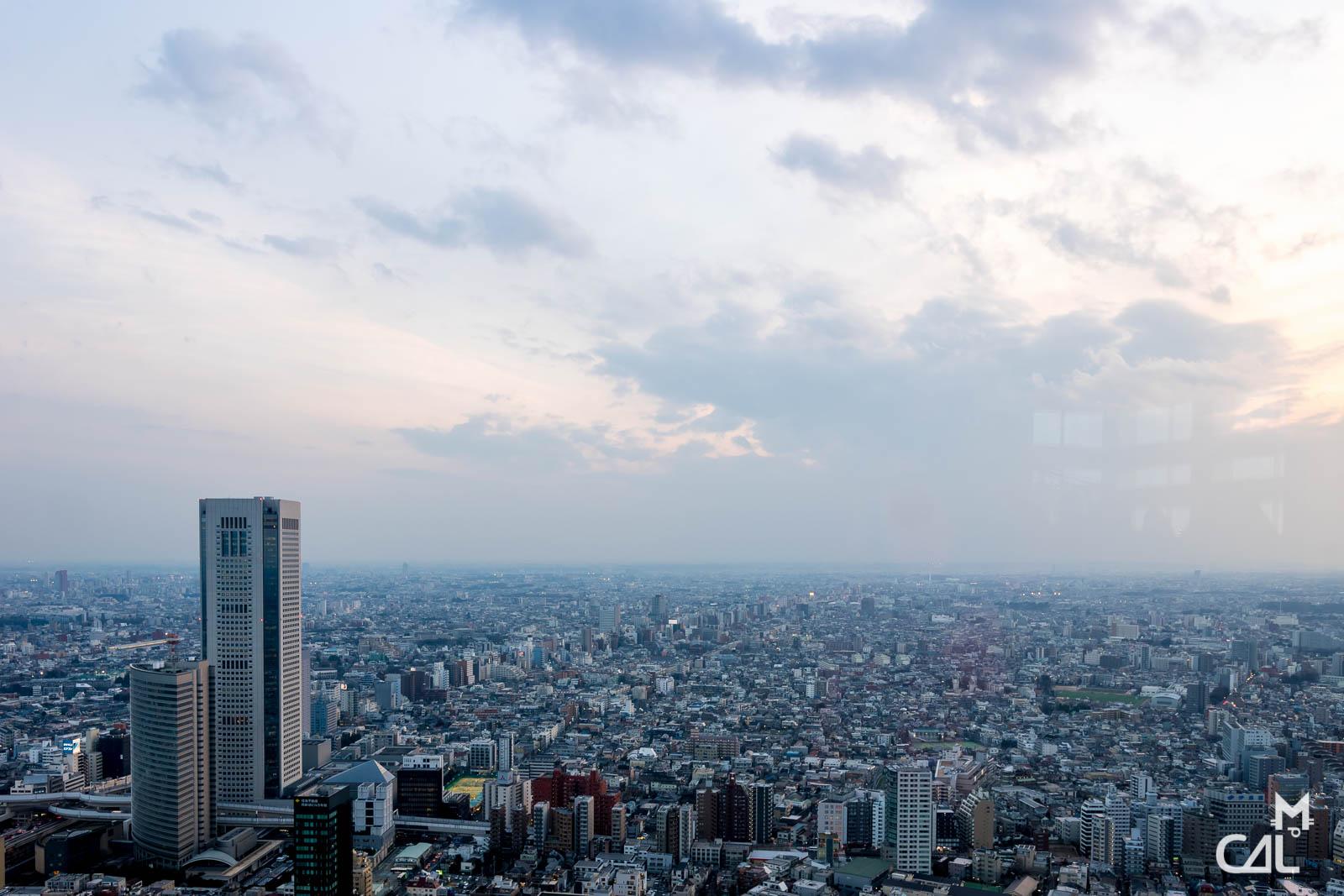 Tokyo Metropolitan Government Building et Shinjuku : vue vers le sud-ouest  ...