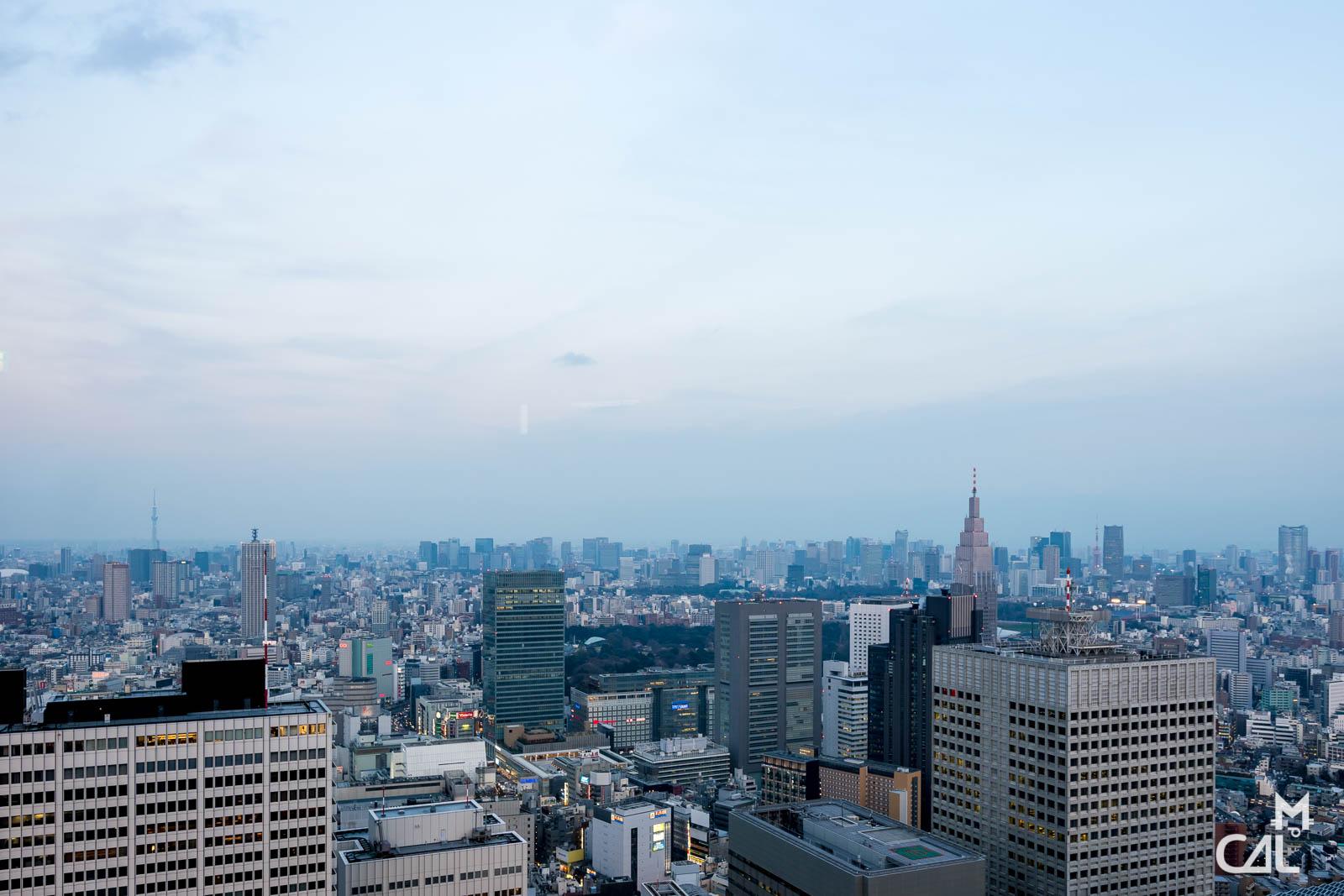 Tokyo Metropolitan Government Building et Shinjuku : vue vers l'est  Mon cha...