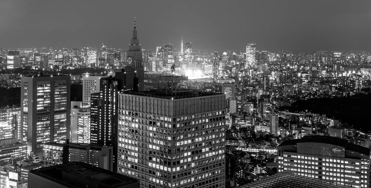 Chat perché : Tokyo Metropolitan Government Building et Shinjuku (1)  Mon ch...